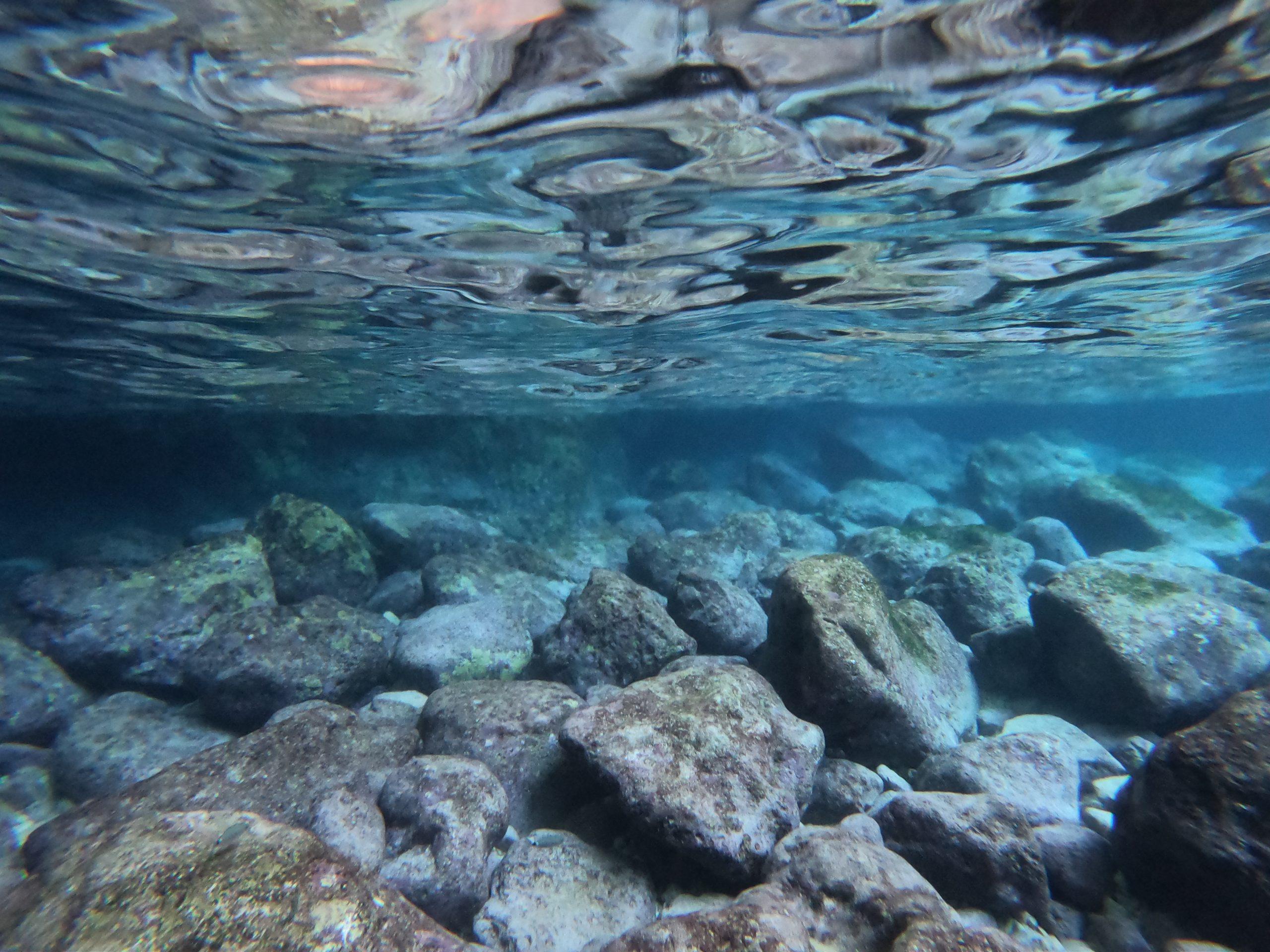 underwater in zakynthos